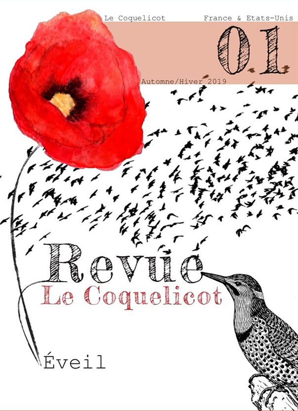le coquelicot n°1